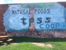 TPSS Co-op mural